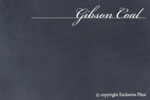 Leren wandpaneel Gibson Coal
